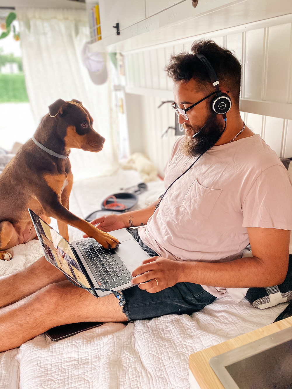 Man and dog in front of laptop