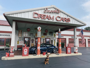 Dogs in Vehicles: Keeping our Furry Friends Safe on the Road