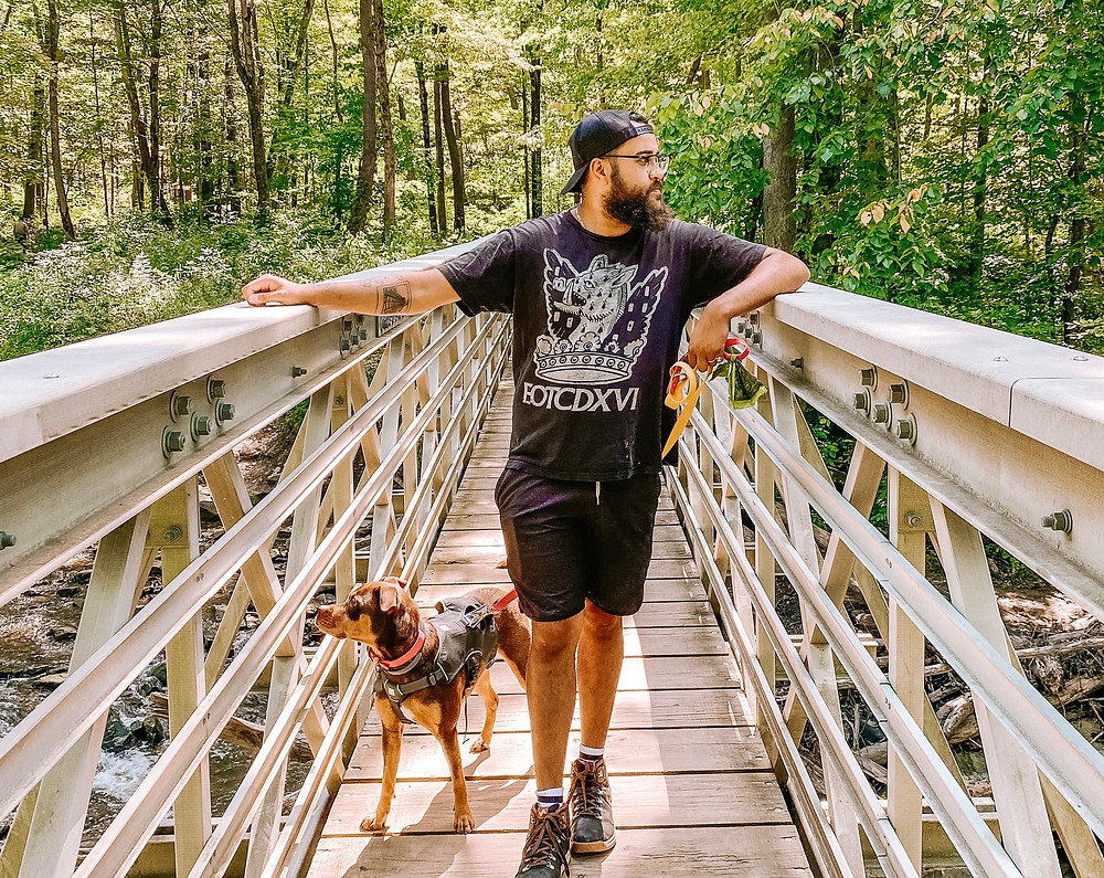 Man and dog stand on bridge in forest
