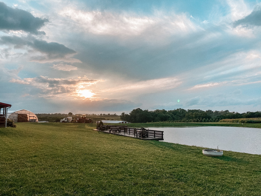 sunset over pond and rural farm