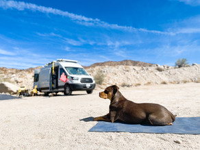 How to Live with a Dog on the Road