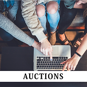 Auction Poster.png