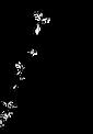 Logo - I am Raye IMAGE ONLY 2.png