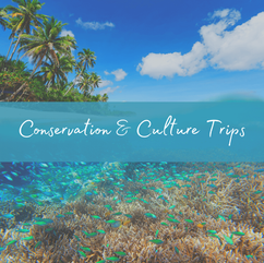 Maldives Budget Conservation Trips.png
