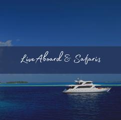 Maldives Safaris.png