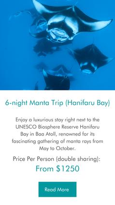 6-night Manta Ray Maldives Trip