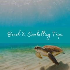Maldives Budget Beach Trips.png