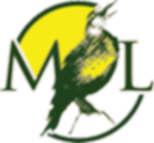 Meadowlark-landscape-and-design-logo