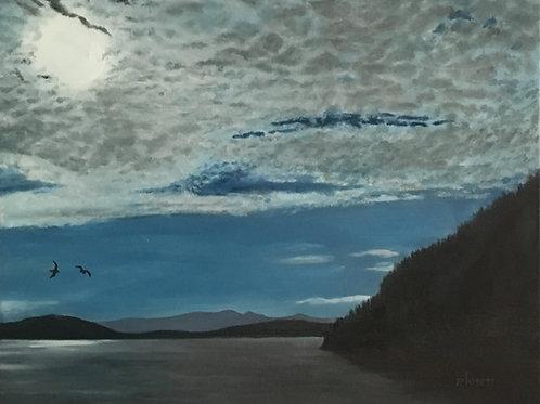 BC Ferry Skies