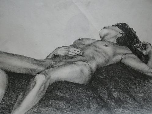 Nude - Live Pencil Study