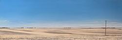 Prairie Skies