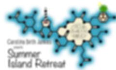 summerisland-logo2017_edited.jpg