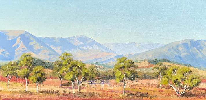 Tjoritja, Macdonnell Ranges - Sandy Weul