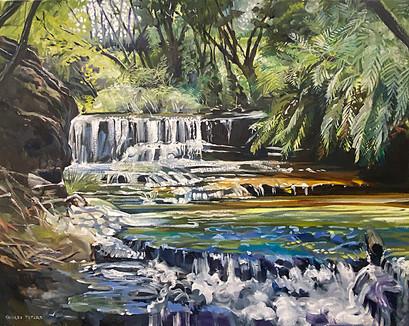 Secret Colours At Wentworth Falls 66x83cm