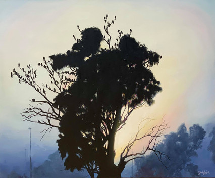 Dunedoo Sunrise - Sandy Weule.jpg