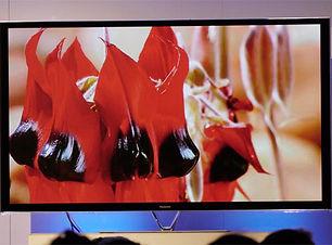 HD TV Plasma Screen