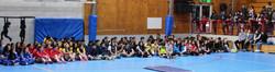 formación_oficial_de_colegios_alemanes_de_la_Región