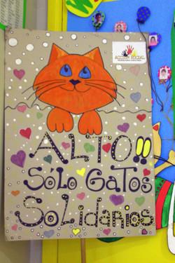 7sala_para_gatos_solidarios..afiche_de_acción_social