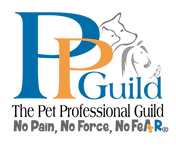 PPG-Logo-FINAL_PPG-with-No-Fear-Tag-copy