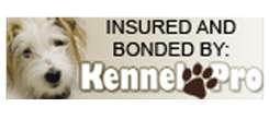 Insured-and-Bonded-Logo-3.png