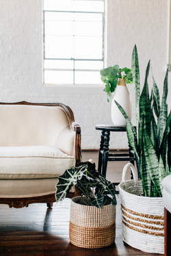Distressed Rentals Inventory Atlanta - Striped Couches-0037