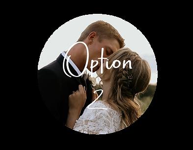 option-2.png