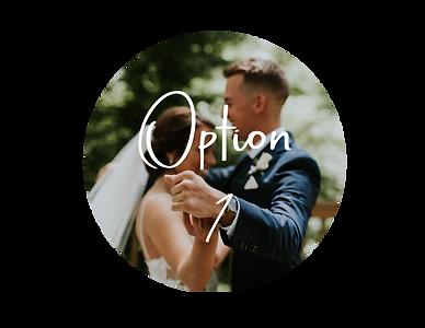 Option-1.png