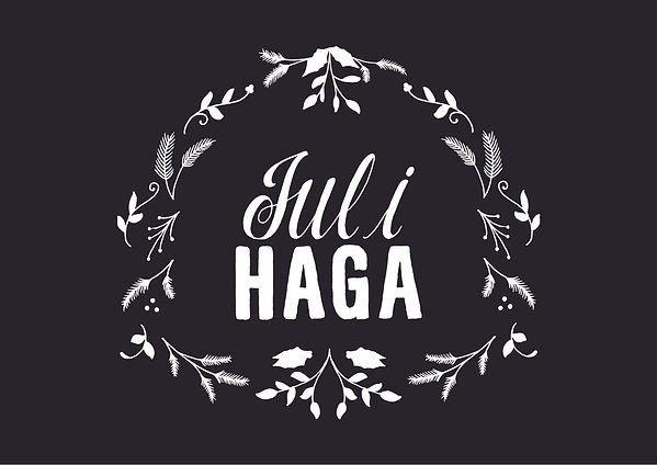 Jul_i_haga_vit.jpg