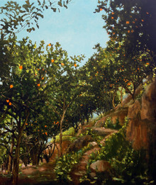 Secret orange grove 2