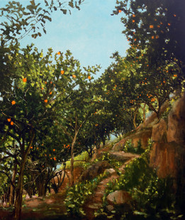 Secret orange grove 2