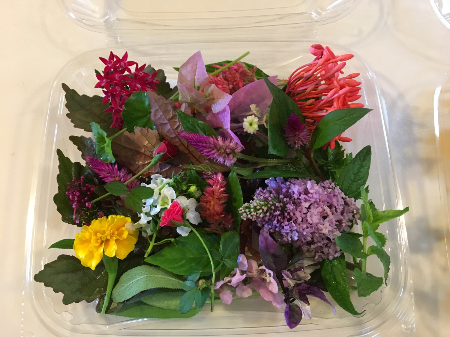 floral herb mix