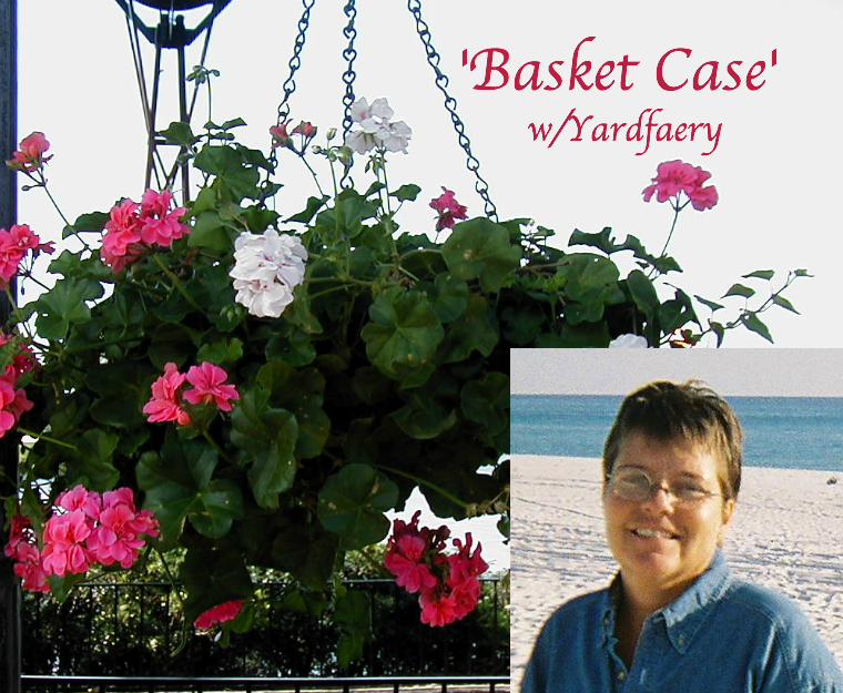 Basket Case Podcast