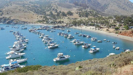 Two-Harbors-Catalina.jpeg