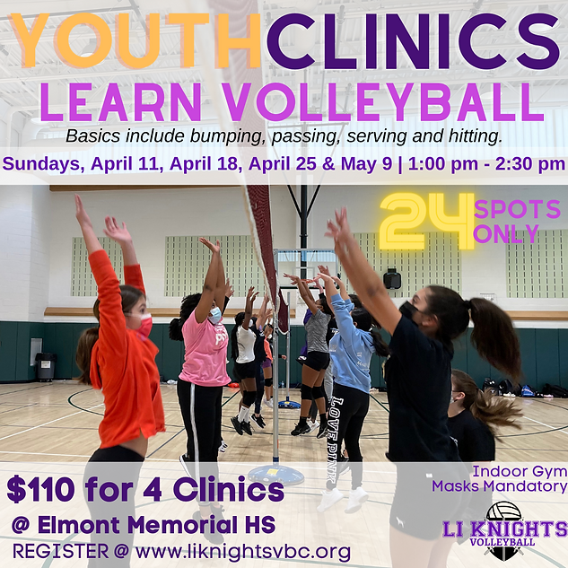 Youth Clinics - Spring 2021-Session 2.pn