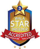Arrowhead Accredited Logo 2022.png