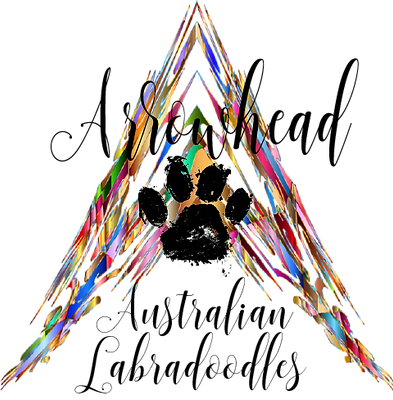 Arrowhead logo (transparent).png