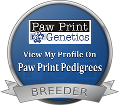 breeder_seal.ab01261cabd3.png