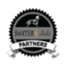 B&B PARTNERS Logo transp.png