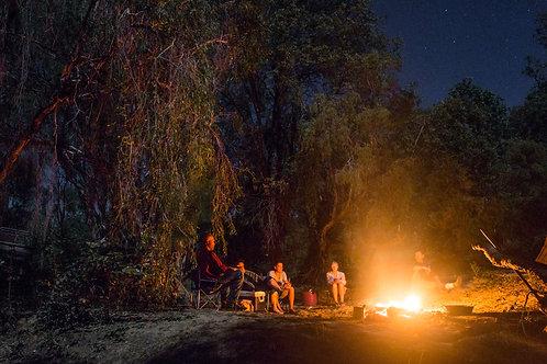 (Non-detectors) Thursday 6 July || Mount Hogan Camping