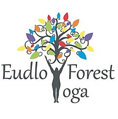 Yoga classes in Eudlo, Sunshine Coast