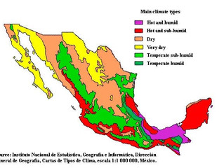 What Is the Climate of Quintana Roo?