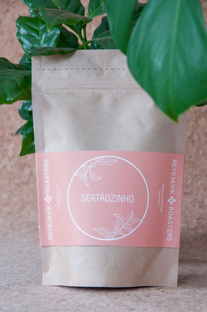 Packaging for coffee bags