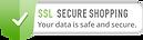 Logotipo de ssl secure shopping