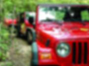 jeep encozumel