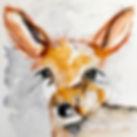 fawn watercolor.jpg