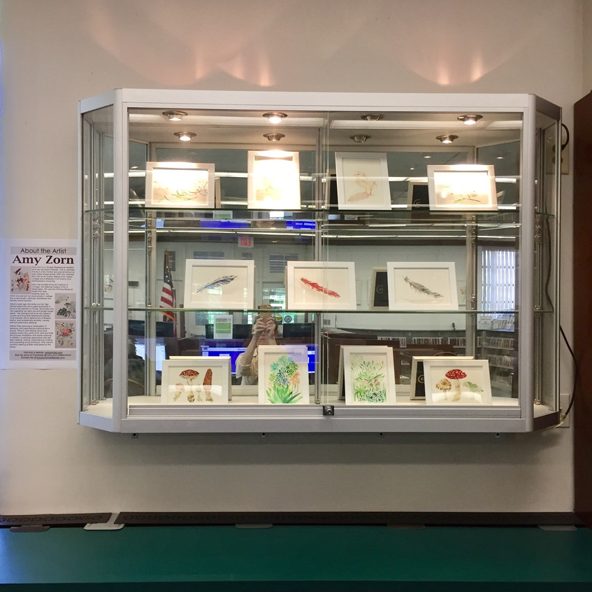 Display case at library