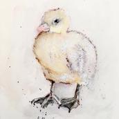 chick watercolor