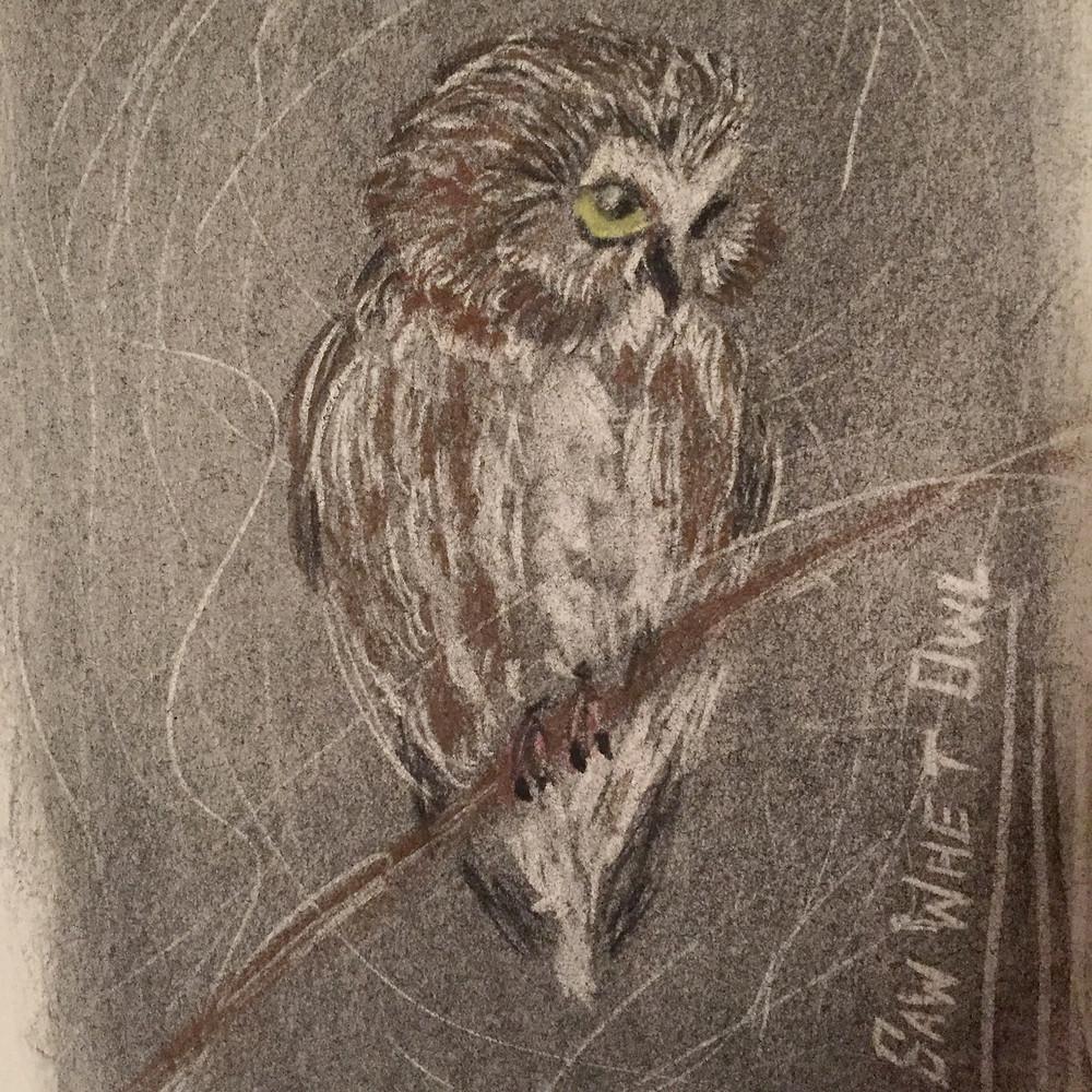 Dark Owl_edited