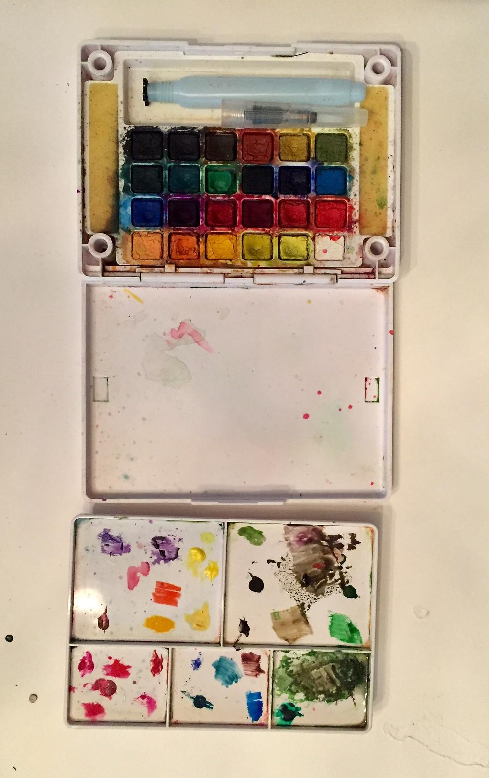 Koi watercolor field box