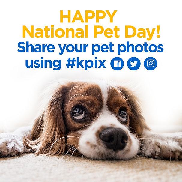 ig 1080 x1080 natl pet day photos today.
